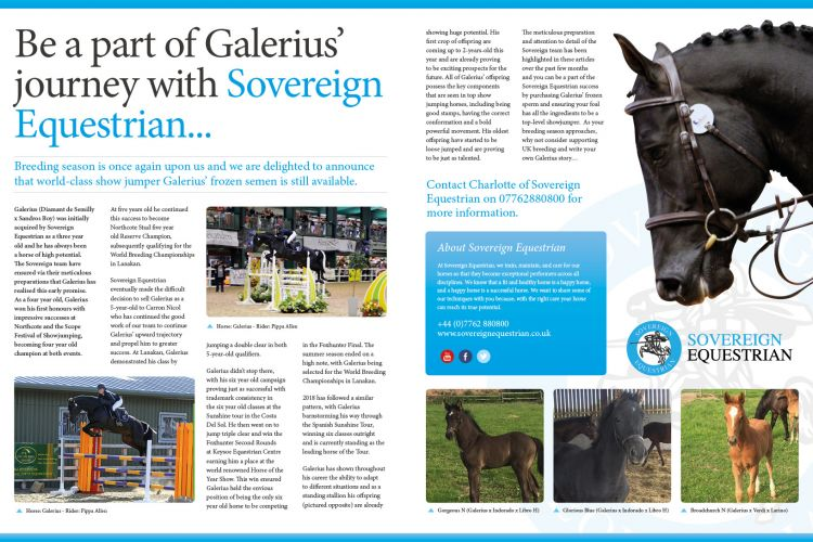 Be a part of Galerius' journey with Sovereign Equestrian...